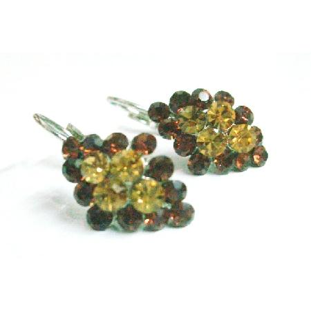 Brown Crystals Earrings Smoked Topaz Crystals Light & Dark Earrings